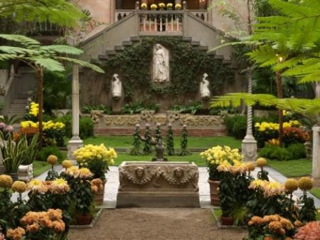 Crisântemos no jardim interior do museu Isabella Gartner