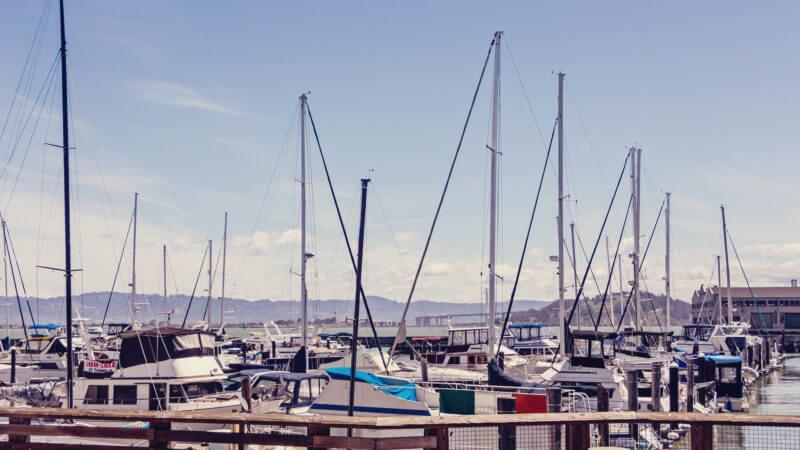 O que fazer no Pier 39 e Fisherman's Wharf de San Francisco