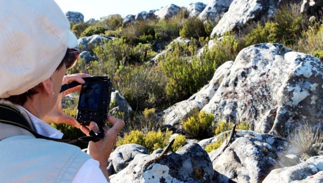Table Mountain na Cidade do Cabo - mirante