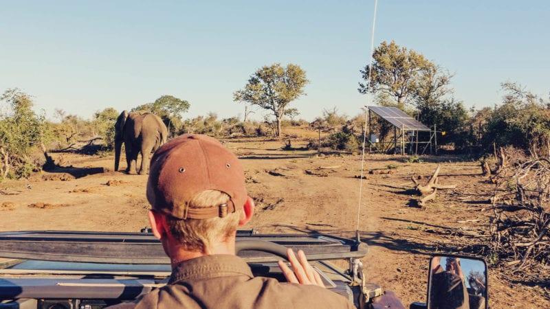 Safári na reserva Madikwe na África do Sul e hospedagem no rhulani safari lodge passeio guiado