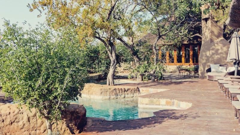 Safári na reserva Madikwe na África do Sul e hospedagem no rhulani safari lodge - área externa da piscina
