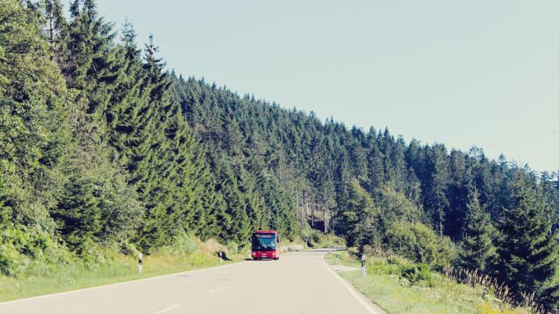 Viagem de carro na alemanha floresta negra (3)-2