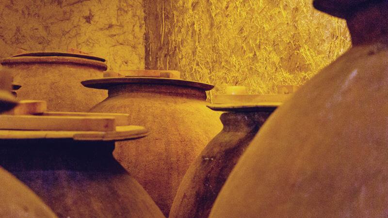Passeio pela Bogedas RE, no Vale de Casablanca - vinícola