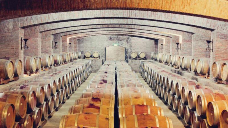 Como é a visita pela vinícula Undurraga, no Valle del Maipo - horários