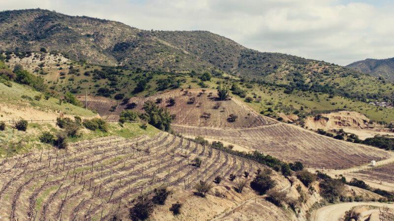 Vinícola Indómita, no Vale de Casablanca perto de Santigo