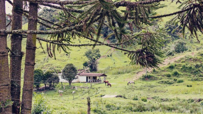 Turismo de isolamento - Cunha / SP